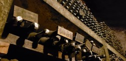 some of these wines in the family's private collection are almost a hundred years old
