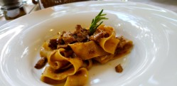 homemade pappardelle pasta with duck sauce