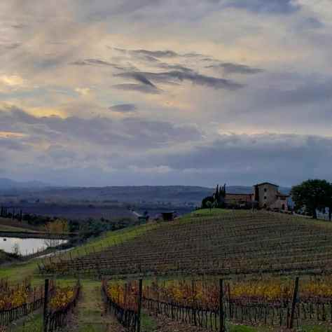 our farmhouse at Castello Banfi