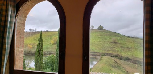 view from the other bedroom